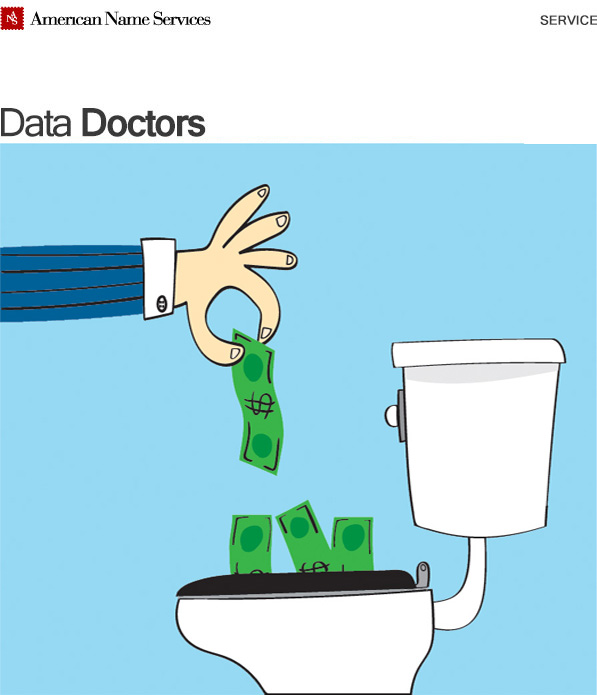 Data Waste, Data Doctors, American Name Services